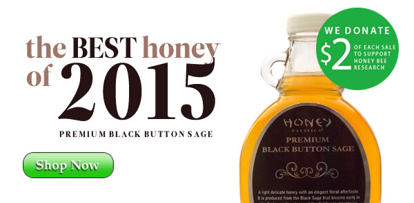 2015 Premium Black Button Sage